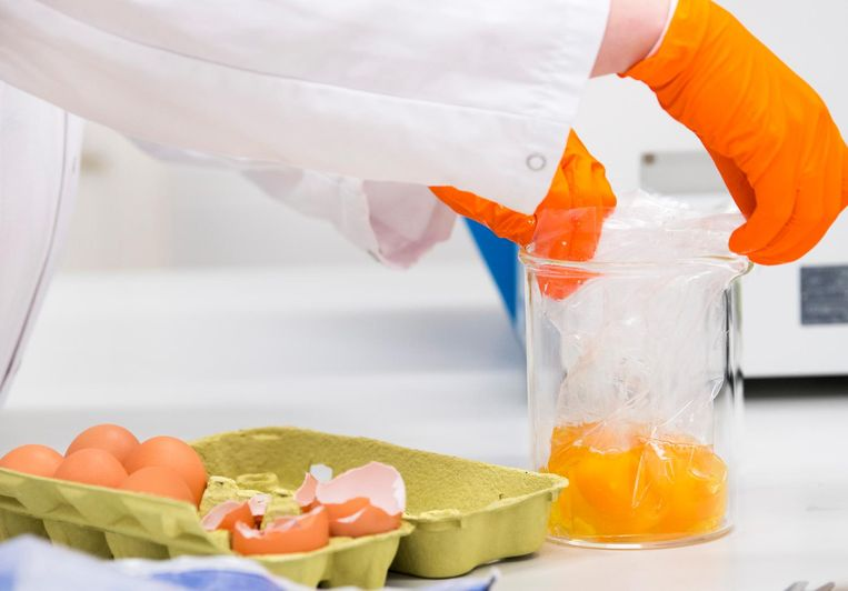 Een medewerker van het laboratorium van de Nederlandse Voedsel- en Warenautoriteit (NVWA) onderzoekt eieren op de aanwezigheid van het gif fipronil. Beeld anp