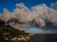 """Les populations méditerranéennes sont """"en danger"""": le rapport alarmant"""