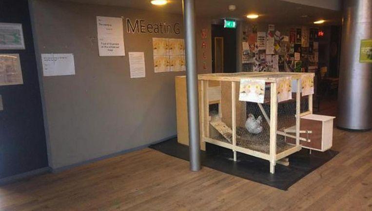 Jip verbleef in de aula van de Amsterdamse theaterschool Beeld -