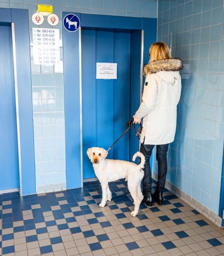 Vreugde na reparatie blijkt van korte duur: lift in Alphense flat weer kapot