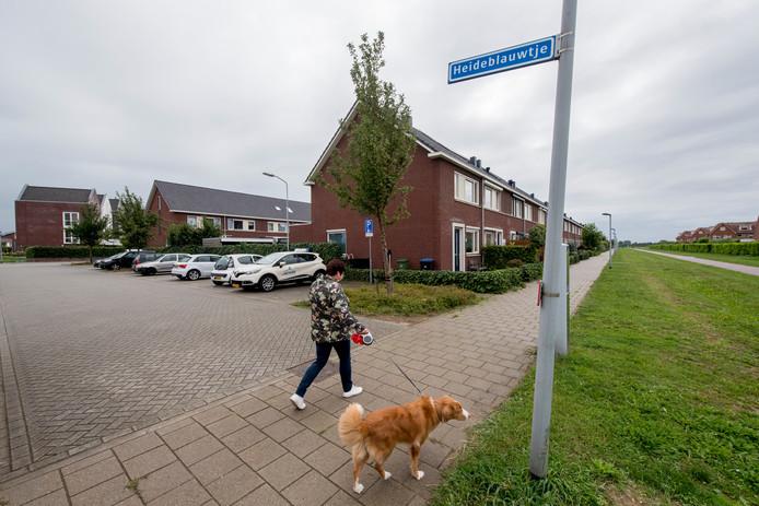 Parkeerplaats aan het Heideblauwtje waar de hond overleed.