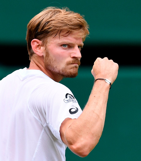 Goffin retrouve le top 20 mondial