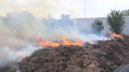 """Vuurzee en enorme rookpluim door brandende compost bij twee bedrijven: """"Hou ramen en deuren dicht"""""""