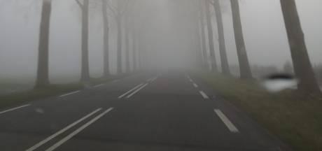 Politie en ANWB waarschuwen voor dichte mist in Oost-Nederland: 'Pas rijstijl aan'