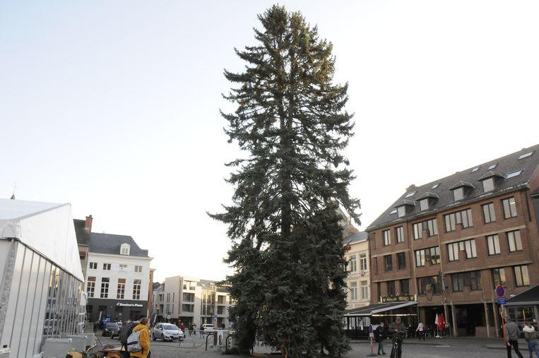 Tienen had nog nooit eerder zo'n grote kerstboom.