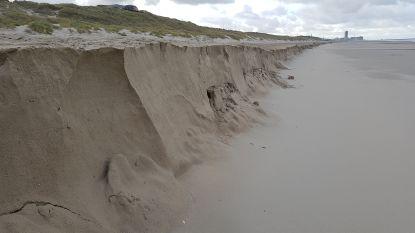 Daar zijn de kliffen weer op Belgische stranden (samen met de discussie rond kustverdediging)