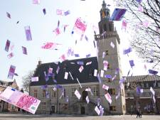 Hulst besteedt jaarlijks miljoen euro verkeerd