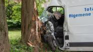 Bestuurder gewond na knal tegen boom