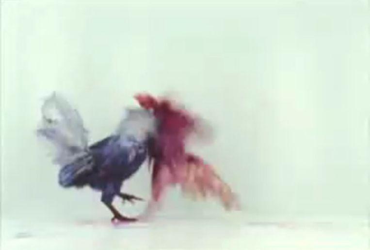 Beeld uit de videoclip Running with the Beast Beeld