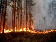 Bosbranden leggen enorme stukken van poolcirkel in as