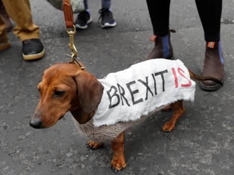 Honderdduizenden Britten demonstreerden tegen brexit
