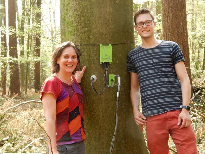 Ute Sass-Klaassen van de Universiteit Wageningen en Jonas von der Crone van de Universiteit Gent bestuderen beuken op landgoed Schovenhorst naar de invloed van klimaatverandering.