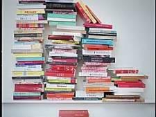 Regionale schrijvers in het zonnetje op eerste Flevolandse boekenbal