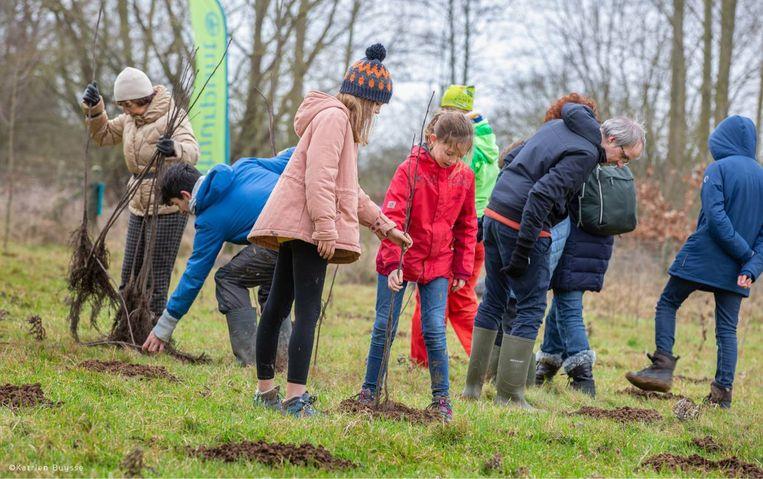 Boomplantactie Natuurpunt Aalst.