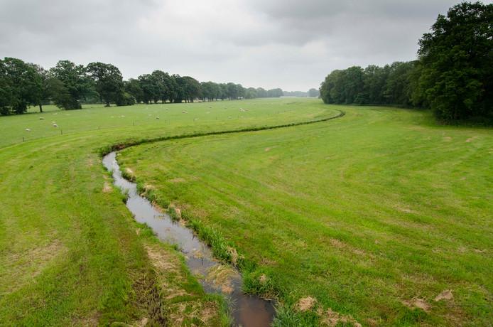 De Hagmolenbeek bij Beckum meandert over de landerijen van Erve Loninkworner, deelnemer aan het project voor natuurlandbouw in Nederland.