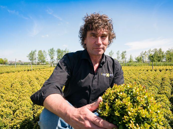 Ronald Stolwijk laat op de kwekerij zien dat zijn planten in creatieve vormen kunnen worden gesnoeid.
