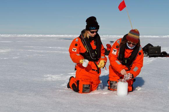 Wetenschappers verzamelen sneeuwstalen op de Noordpool.