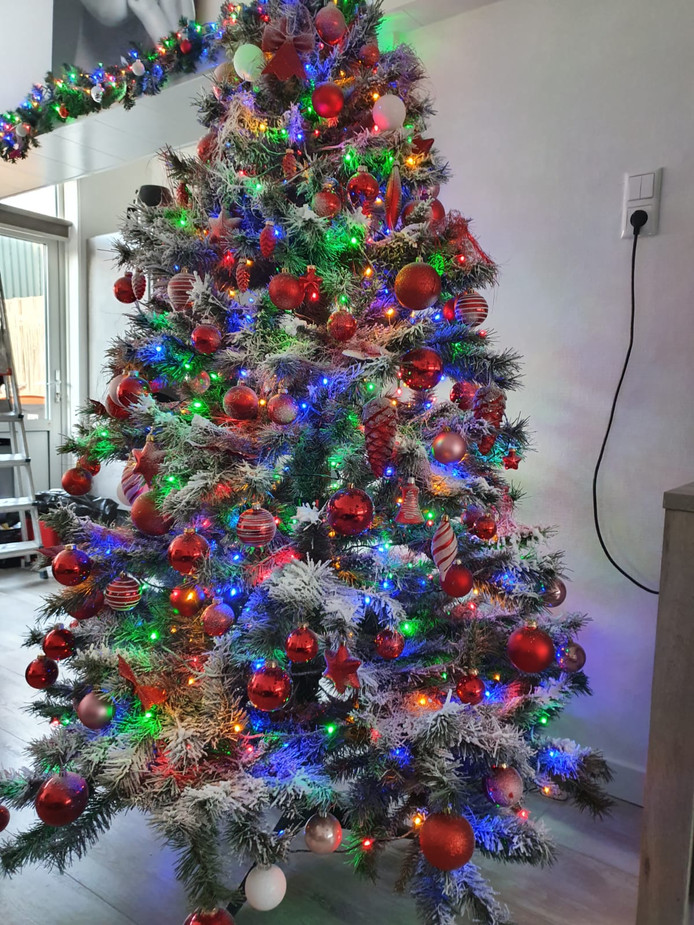 De boom van Patrick en Renate uit Deventer staat in al zn glorie in de woonkamer