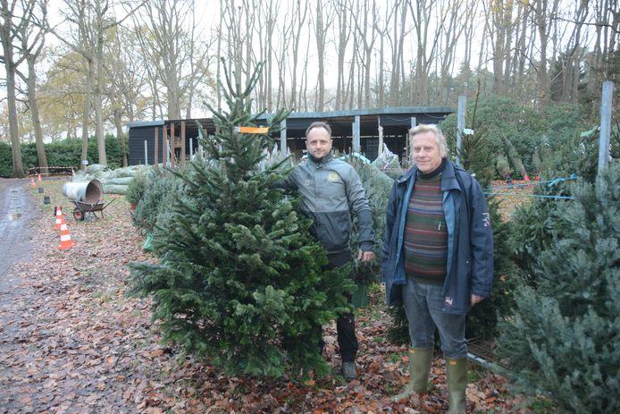 Michiel en Stany Van Haelst stellen een vroege stormloop op kerstbomen vast dit jaar.