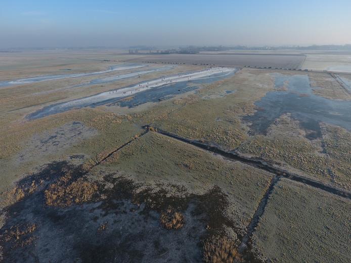 De Sint Laurense Weihoek: Het gebied waar normaal vogels voorkomen is nu overgenomen door schaatsers.