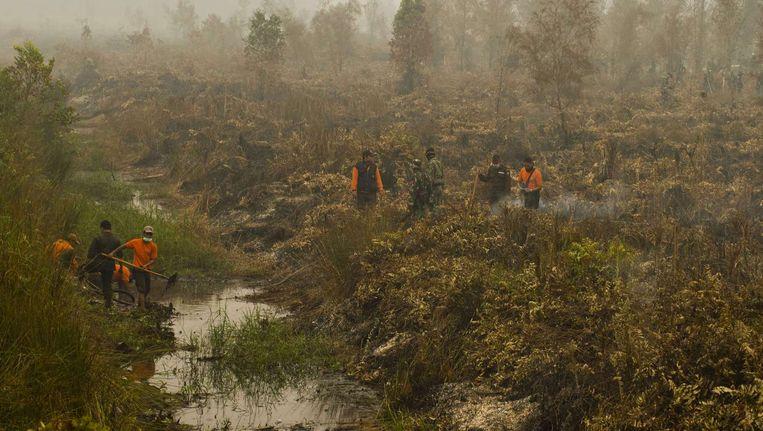 Indonesische brandweermannen halen water uit een kanaal om een bosbrand te blussen op Borneo. Beeld ANP