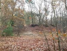 Loodvervuiling aangepakt  in Langenboomse bossen