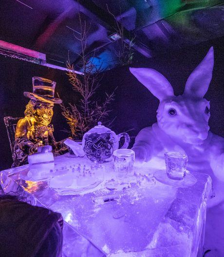Geen ijsbeelden en geen ijsbaan, nekt corona alle winterpret in Zwolle?