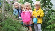 Op zoek naar kinderopvang in Sint-Laureins? Raadpleeg thuis het digitaal loket