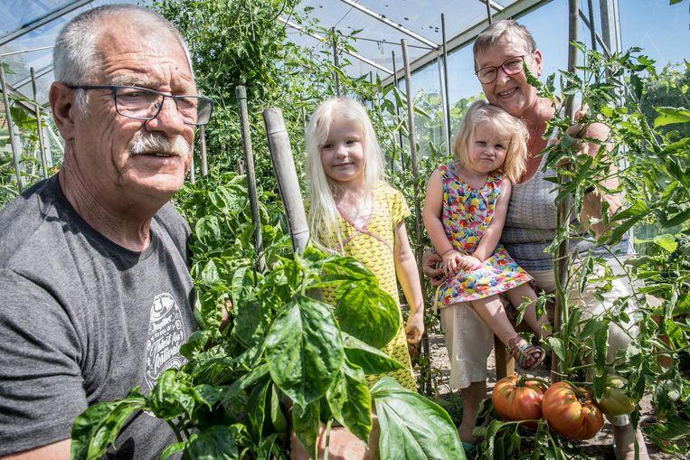 Ronny Deleye, Fleur Delaplas, Febe Delaplas, Marijke Seys. Onderaan rechts zie je enkele van hun grote tomaten.