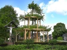 Boom uit Overloon houdt boom in Groeningen overeind