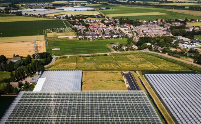 Locatie toekomstige biomassacentrale Vierpolders.