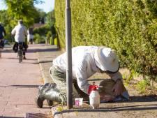 Imker plukt zwerm bijen van een stoep in Soest
