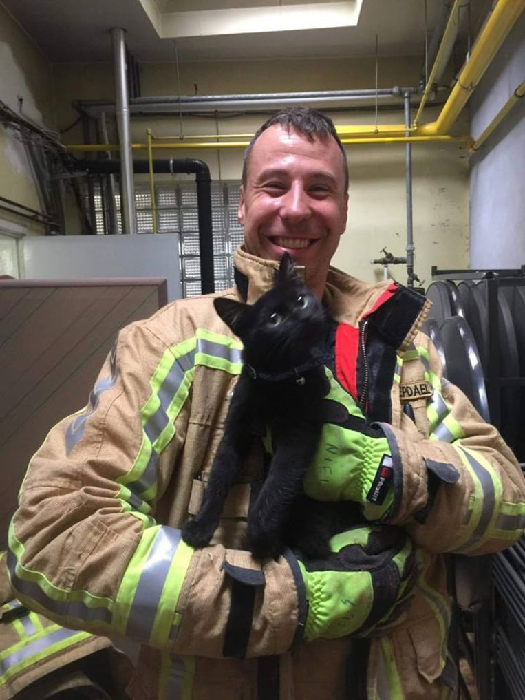 De kat kon door de brandweer bevrijd worden en terug bij de eigenaar gebracht worden.