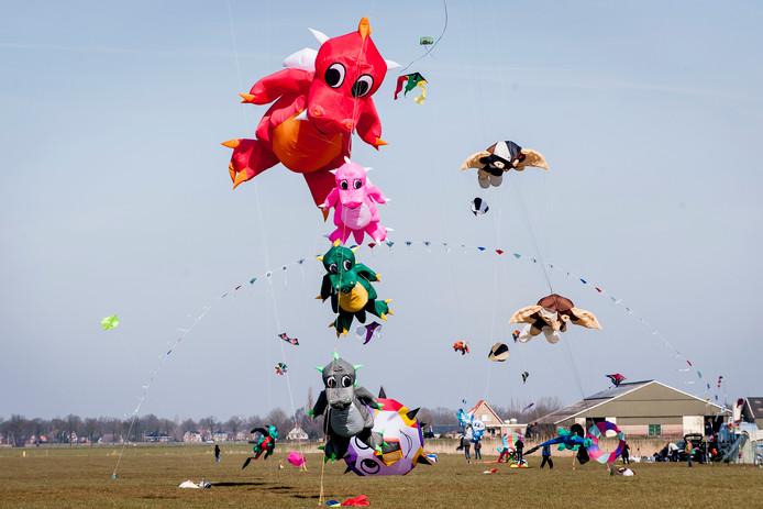 Het vliegerfestival in Vroomshoop trekt ieder jaar bijzondere creaties.