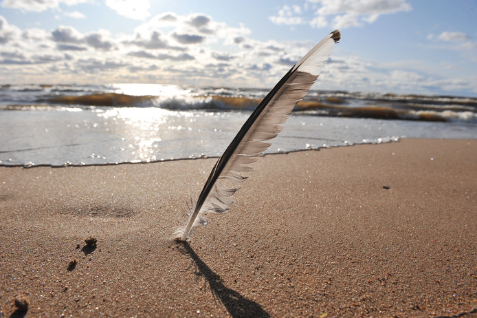 Poëzie aan zee in Domburg.