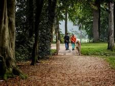 Bewatering bomen alternatief voor impregneren