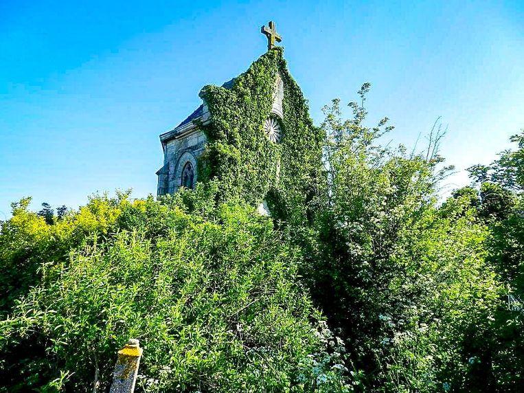 De beschermde kapel was volledig overwoekerd.