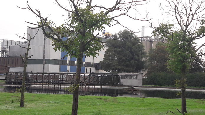 Fabriek in een parkachtige omgeving.