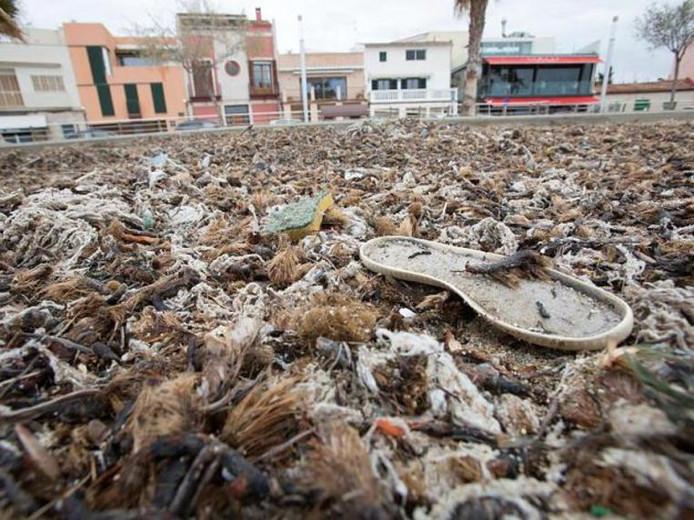 De rioolwaterzuiveringsinstallaties van het eiland zijn verouderd en hebben onvoldoende capaciteit. Met alle gevolgen van dien.