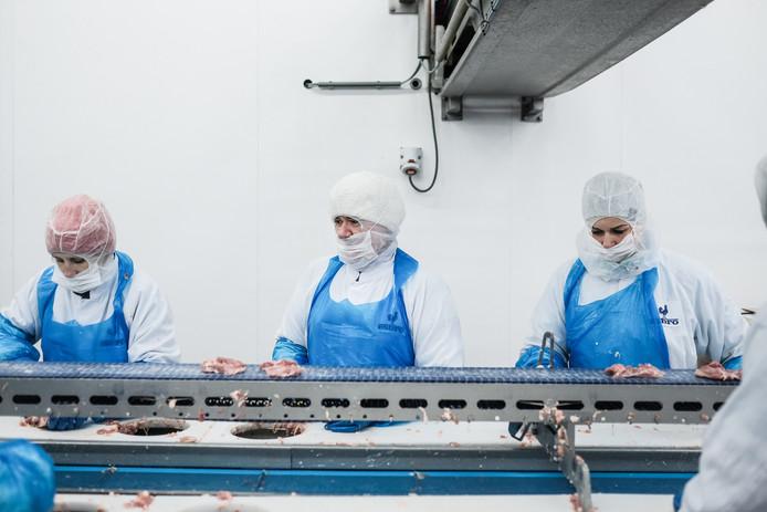 Archieffoto: Poolse arbeidsters aan het werk bij de Esbro.