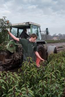 Breda for Opleiding tuin
