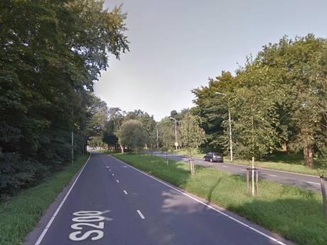 Verkeer aan banden in Scheveningse Duinbos