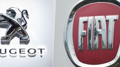 Peugeot en Fiat willen Europees samenwerken