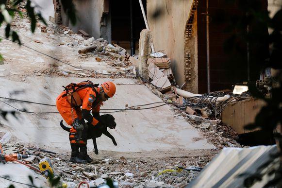Een brandweerman en zijn hond zoeken tussen het puin naar overlevenden.