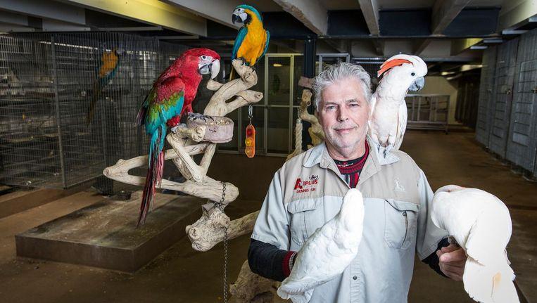 Wouter Jansen: 'De beste sprekers zijn grijze roodstaarten' Beeld Dingena Mol
