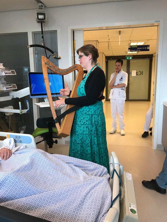 Een harpiste op een van de kamers van de intensive care in het JBZ.