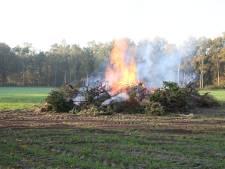 Brandweer onderneemt geen actie bij brand in Balkbrug