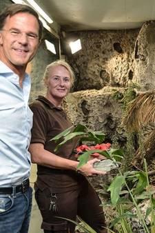 Mark Rutte bezoekt 'zijn' leguanen in Diergaarde Blijdorp