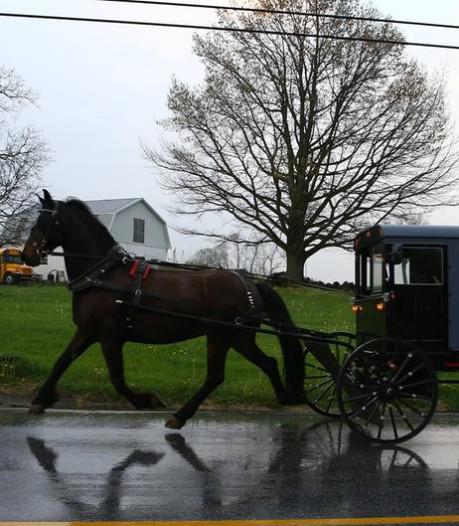 Politie houdt Amish-koets aan met bierkrat en ingebouwde gettoblaster