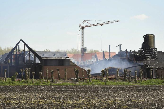 Een uitgebrande koeienstal.